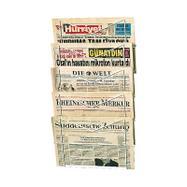 Newspaper Rack I