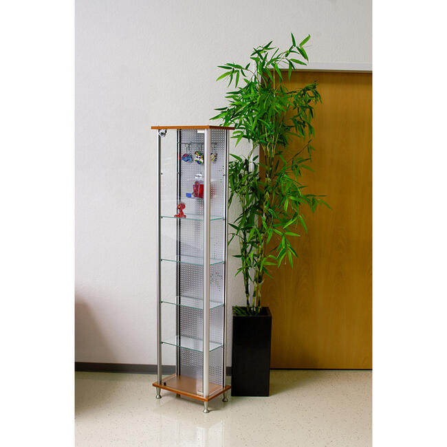 Glass Showcase with Pegmetal Back Panel