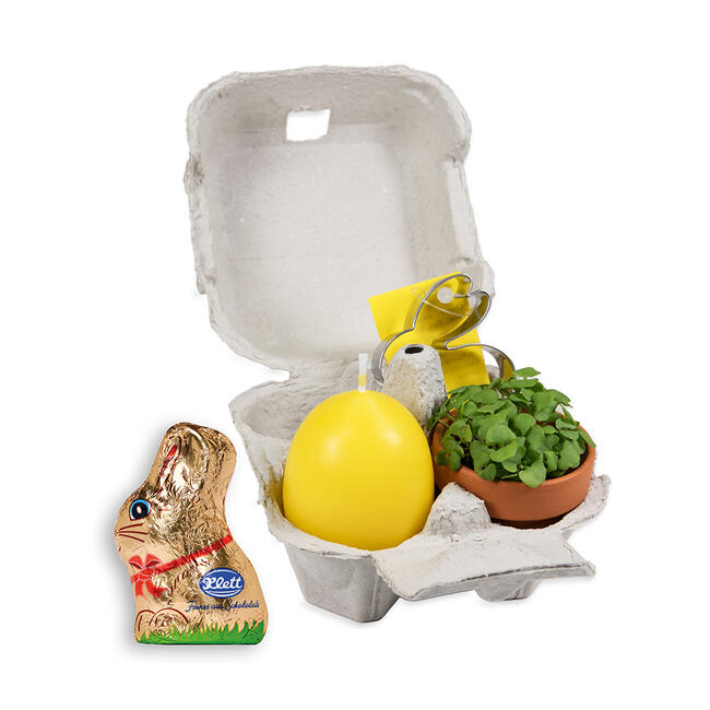 Egg Carton Gift Set with Chocolate Easter Bunny