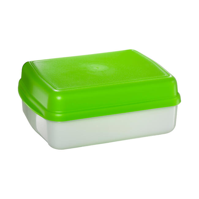 "BIO Snack Box ""Lunch"""