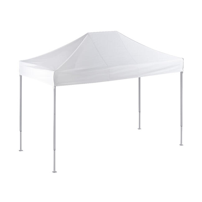 "Promotional Tent ""4 x 2 m"""