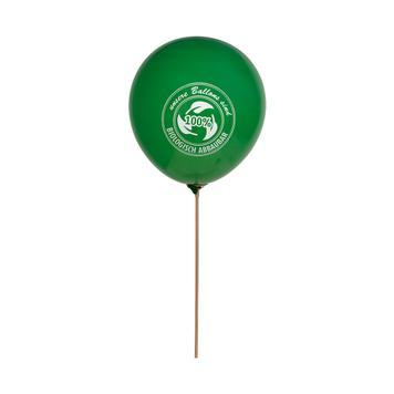 Balloon Support Rod