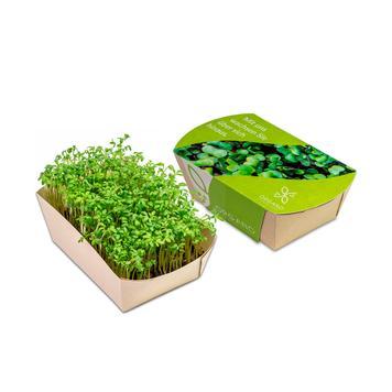 Microgreens Garden